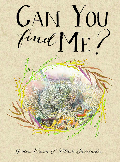 Can you find me? book cover