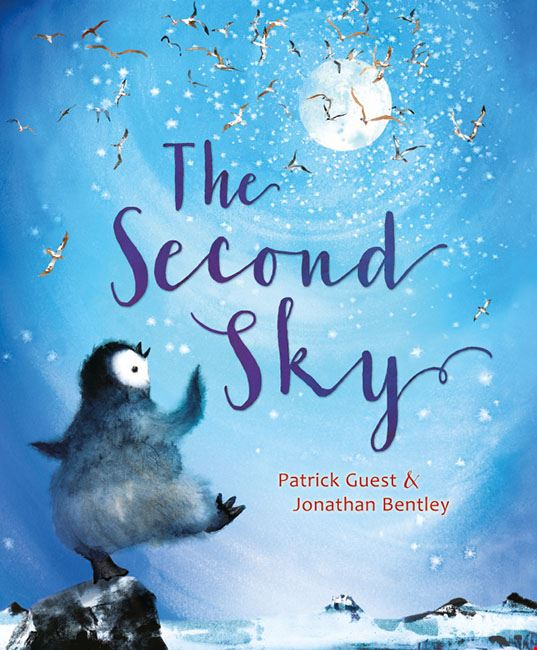 The Second Sky book cover